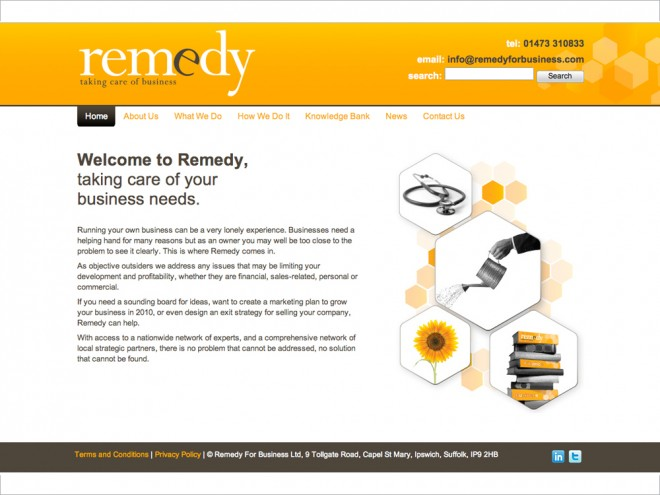 Remedy For Business Website